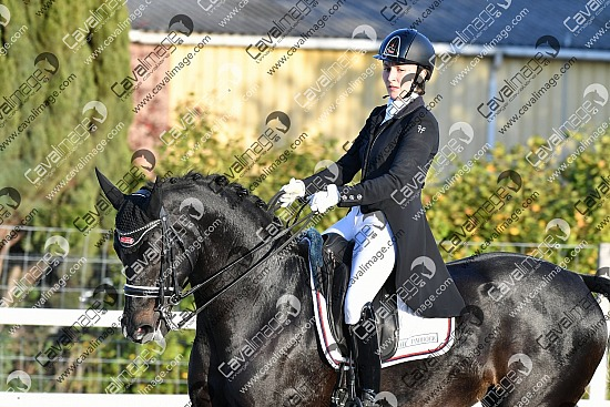 Genech (14-15 oct. 2017) - Dressage